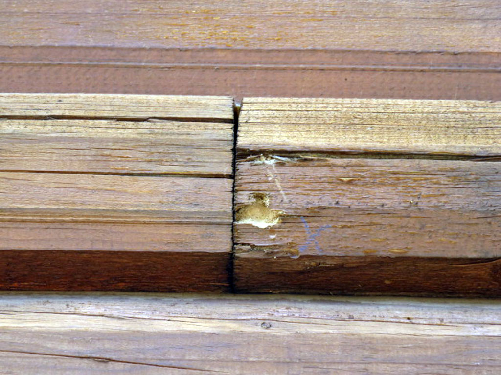 Log homes with cracked and checked logs will develop deterioration and insect intrusion