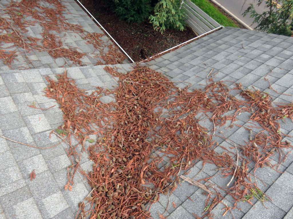The roof should be kept clear of debris at all times if possible to promote positive drainage